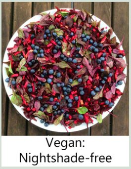 vegan nightshade-free